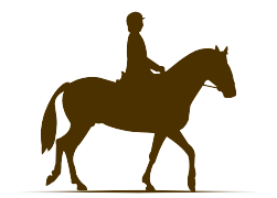 riding big horses for elder children and adults
